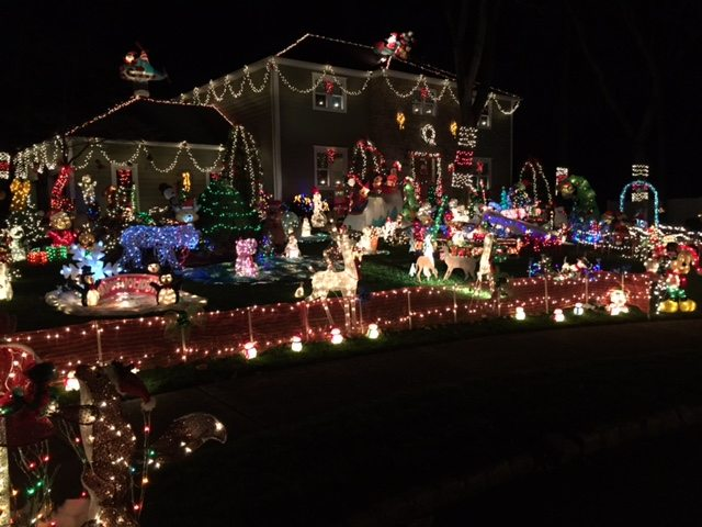 christmas lady lights up her property for charity