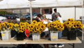 Delight In Jersey Fresh Offerings With The Morristown Farmer's Market