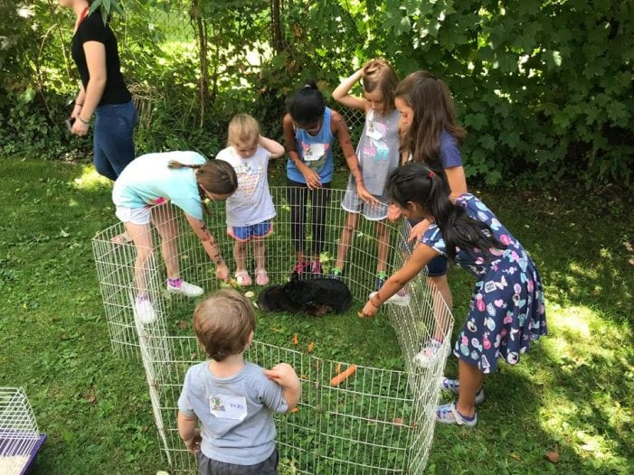 Animals Help Teach Kids About Creation At Bible School