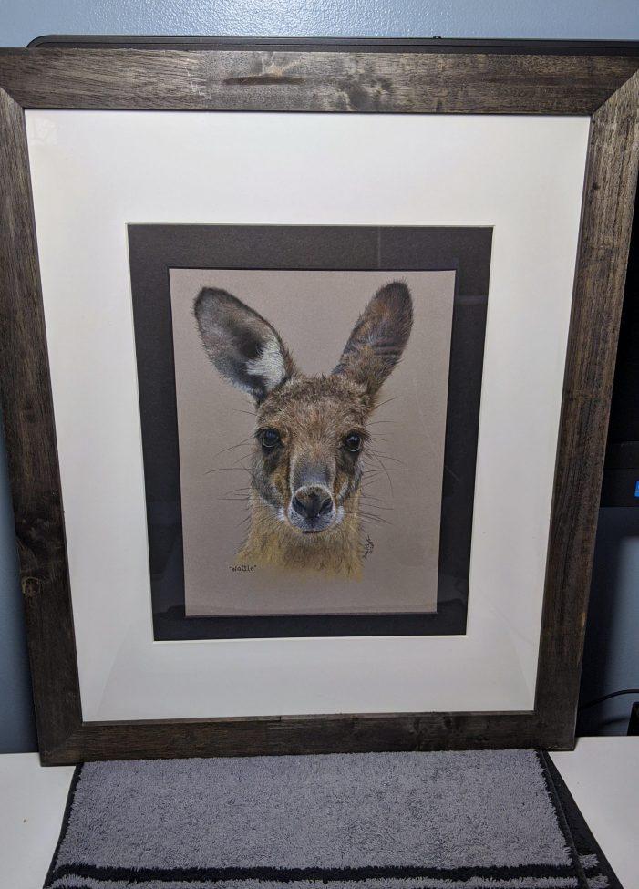 Budd Lake Woman Turns to Art to Help Animals in Australia