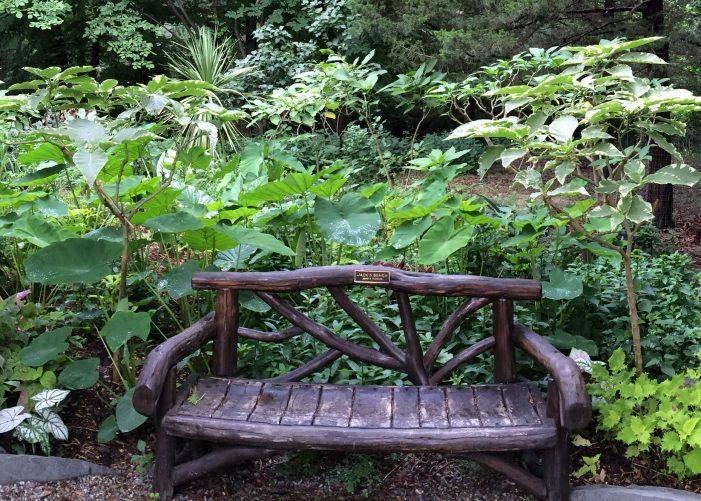 Donate-a-Bench Program at Laurelwood Arboretum