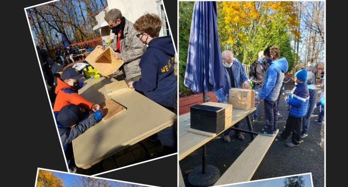 Scouts Build Bat Boxes