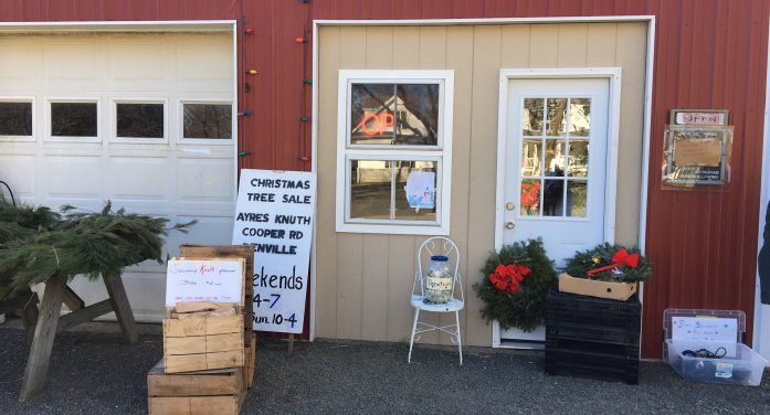 Ayres/Knuth Farm Foundation Thanks Community for Tree Sale Support