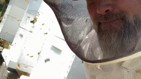 Randolph Man Continues to Learn and Raise Bees