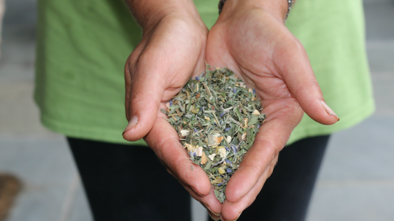 Former Lawyer Embraces Farming and Creating Natural Herbal Teas
